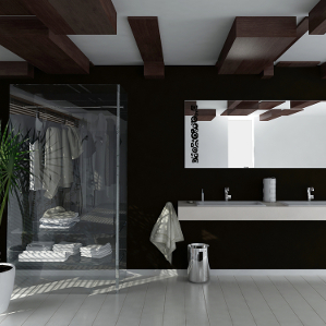 dark coloured bathroom